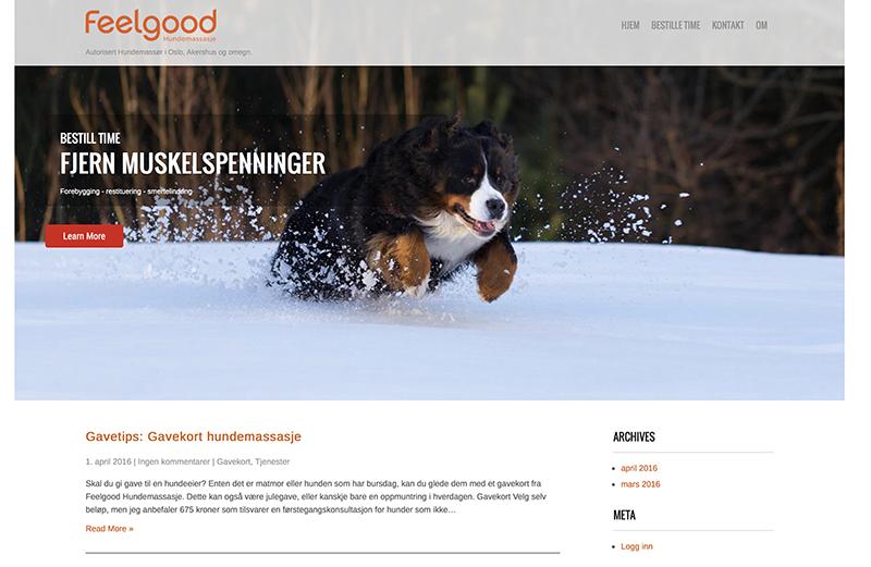 Skjermdump av nettsiden til Feelgood Hundemassasje.