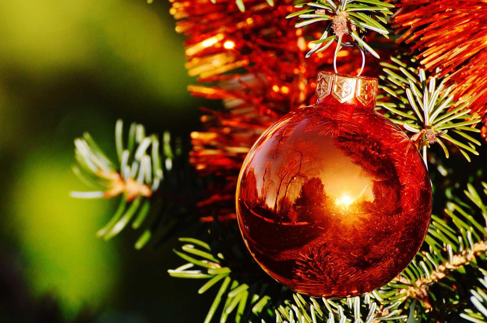 Rød julekule som henger på juletre. Nærbilde.