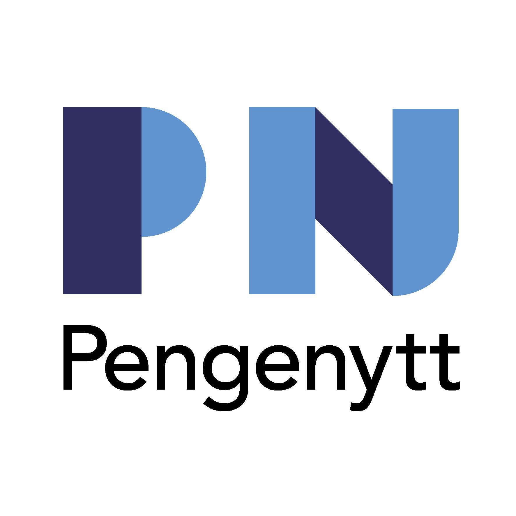 Logoen består av bokstavene P og N i tillegg til ordet Pengenytt. De to bokstavene består av tykke stolper som er i enten mørk blå eller lys blå. N-en er avrundet nederst til høyre.